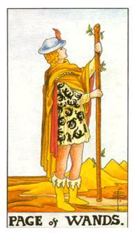 通用伟特塔罗牌 - Universal Waite Tarot - 权杖侍从 - Page Of Wands